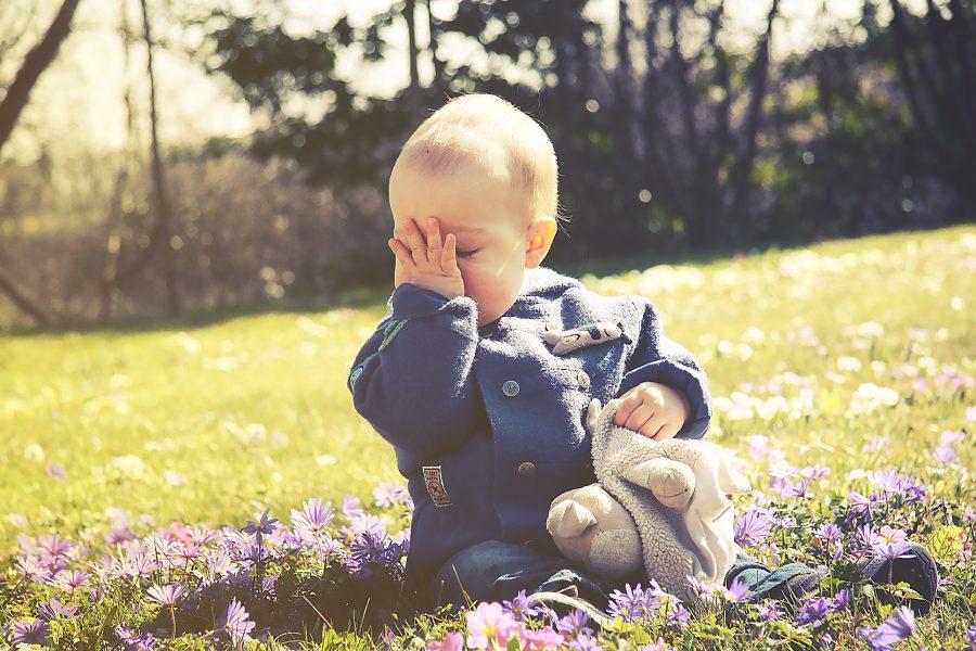 A la découverte du printemps